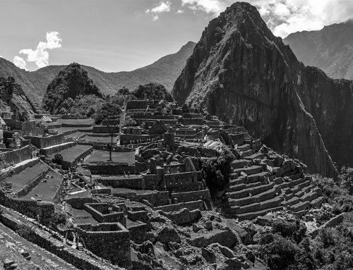 Barómetro de Xenofobia Perú – 1er Boletín Abril 2021
